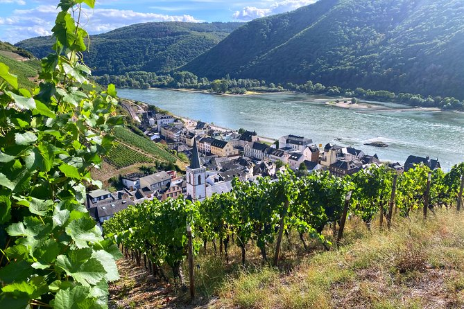 Personal wine tours in the heart of Germany from Frankfurt region - Mainz