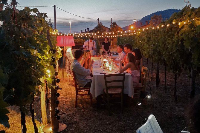 Aperitif / Tasting in a Vineyard of Lucca with transfer