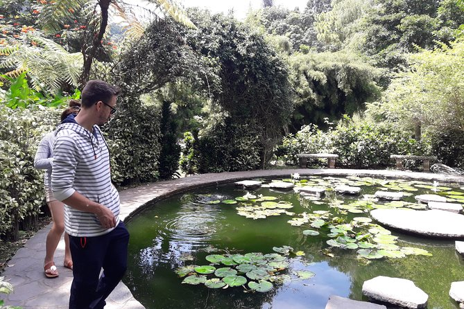 Flowers and gardens tour in San Salvador
