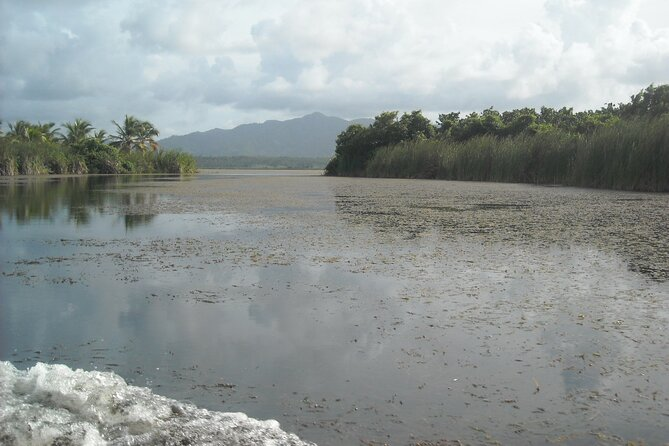 Private Boat Nature Tour of Limón Beach and Lagoon