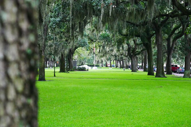 Irish History of Savannah