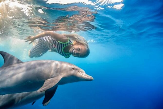 4 Hours Snorkeling With Dolphins Trip By A Private Speed Boat & Water Sports