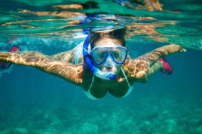 Snorkeling Experience in Cabo San Lucas