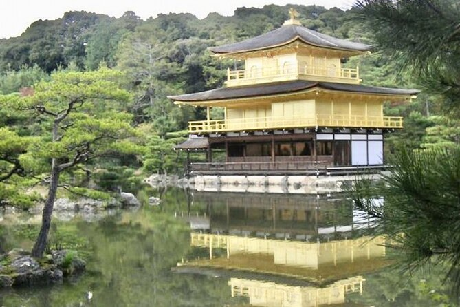 Full-Day Private Guided Tour to Kyoto Palaces and Temples