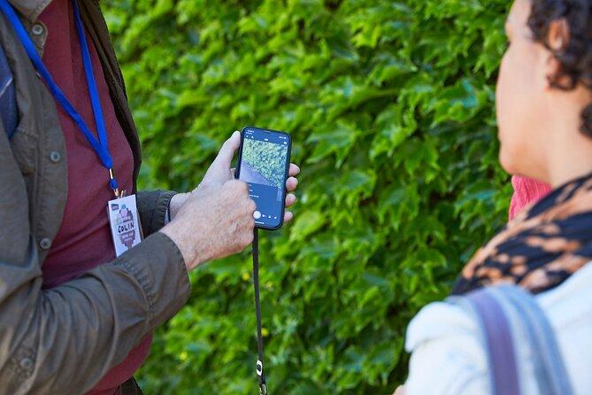 Phone Photography Workshop - Explore Balmain.