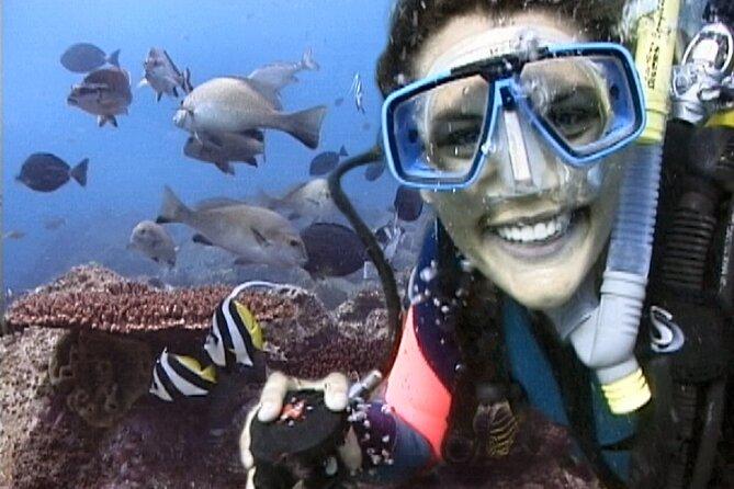 3-Hour Byron Bay Certified Scuba Diving Tour