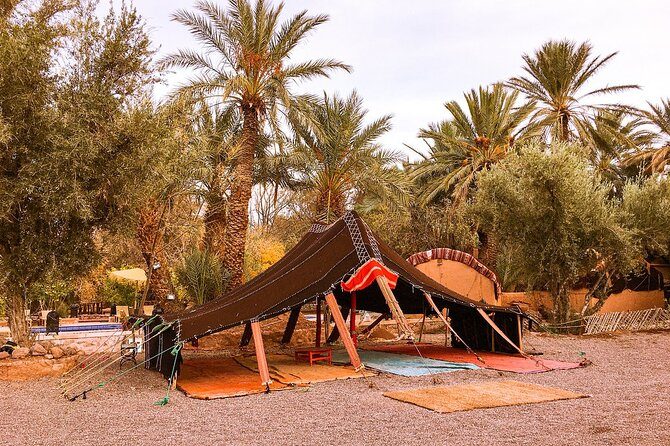 South Morocco Adventure : Experience 6 days From Marrakech
