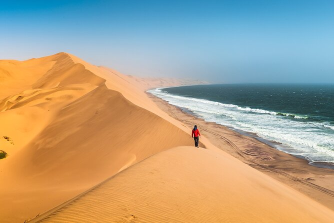 8-Day Private Wildlife, Desert and Coast Tour in Namibia