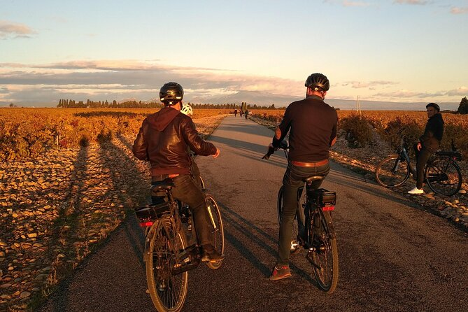 Provence and Wine Tasting by E-Bike from Saint-Rémy-de-Provence