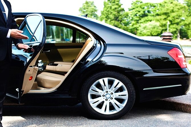 Vehicle Type 3: Luxury car for your business itinerary which includes driver, private security and/or translator.