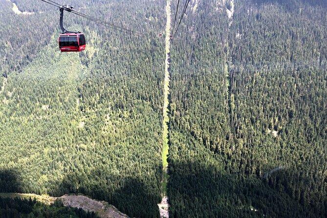 Vancouver Winter Fun at Peak to Peak Gandola in Whistler & Squamish Tour Private