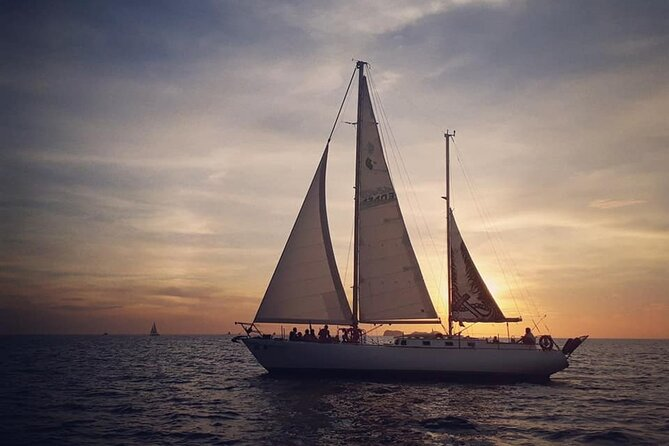 Pegasus Private Sailing Cruise from Flamingo & Tamarindo
