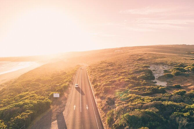 LGBT+ Friendly 2 Day Private Great Ocean Road Tour
