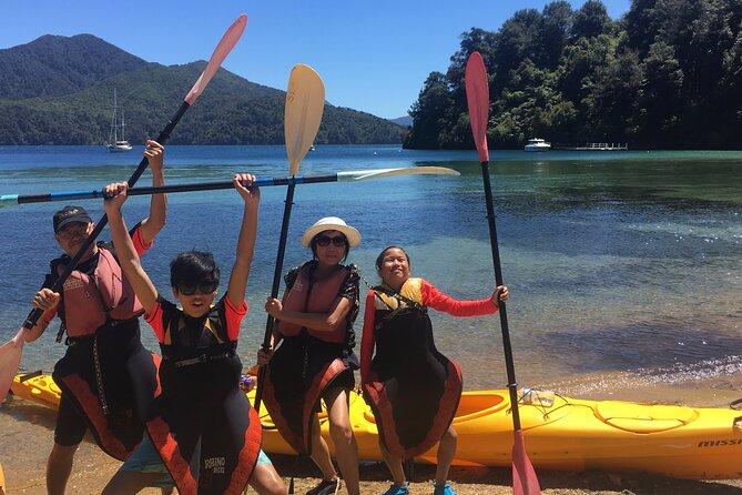 Half-Day Guided Sea Kayaking Tour from Anakiwa