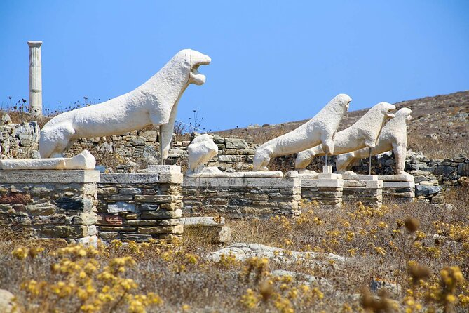 Half Day Guided Cruise Tour in Delos Mykonos