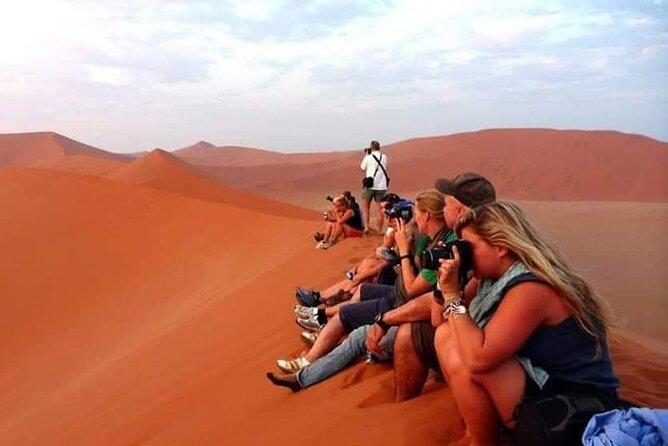 Evening Desert Safari Dubai with BBQ Dinner (Pick Up By Bus)
