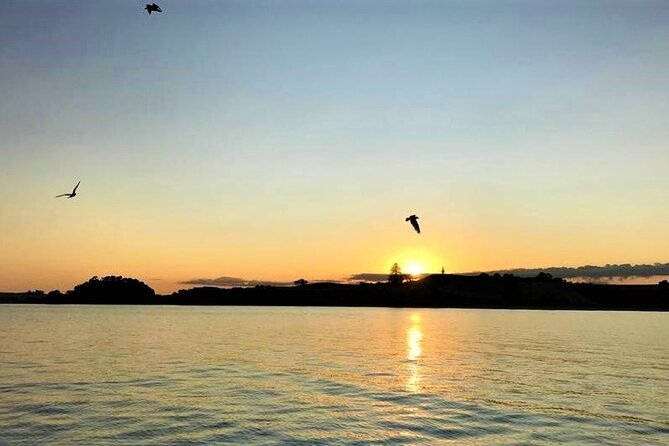 3 Hour Bay of Islands Sailing Cruise with Gourmet Dinner