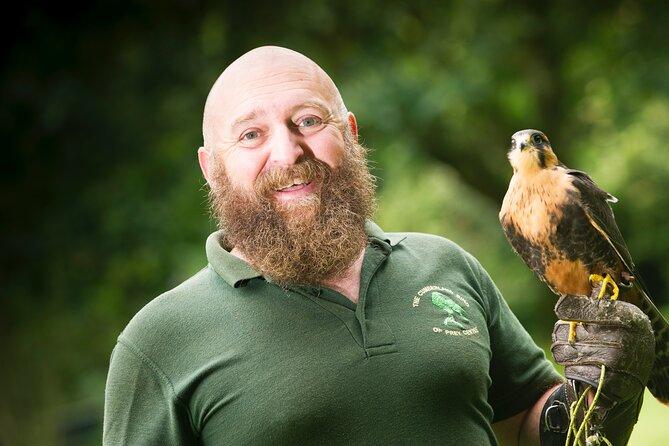 Private Family Bird of Prey Experience in Carlisle
