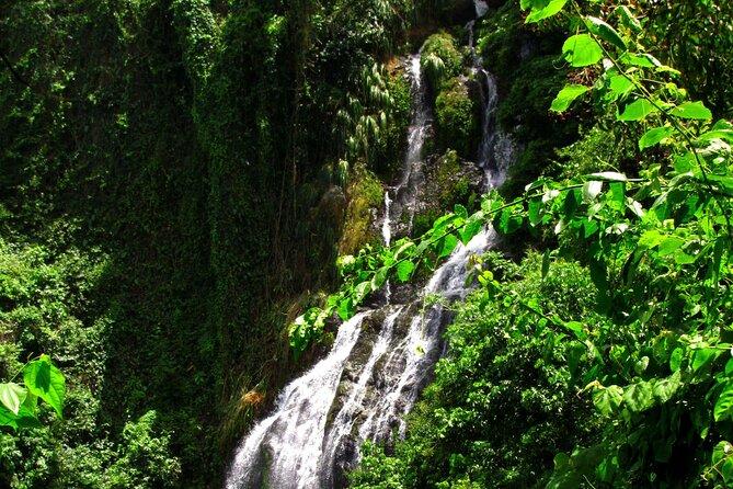 Big Waterfall Hiking Adventure - Puerto Rico