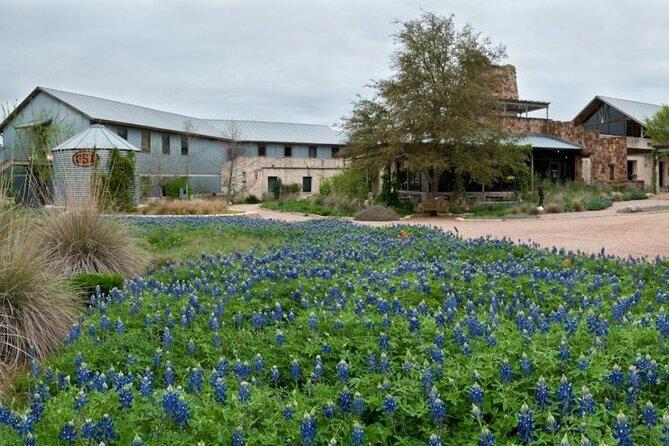 Violet Crown Wildflower Center Tour