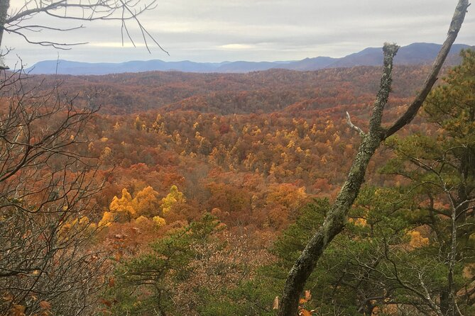 Full-Day Hiking Adventure in Pisgah National Forest