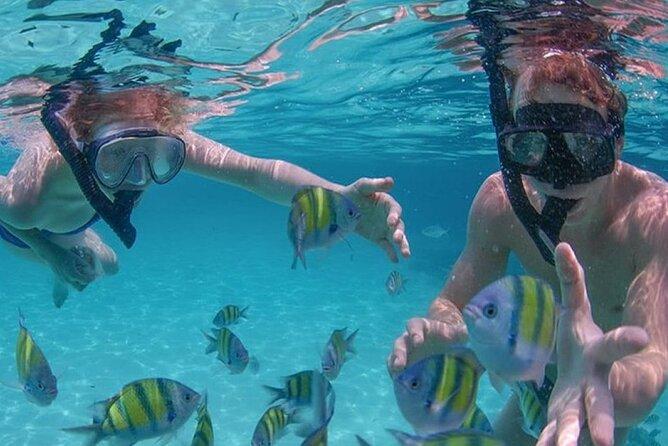 Snorkel Adventure Tour at Waikiki Turtle Canyon reef