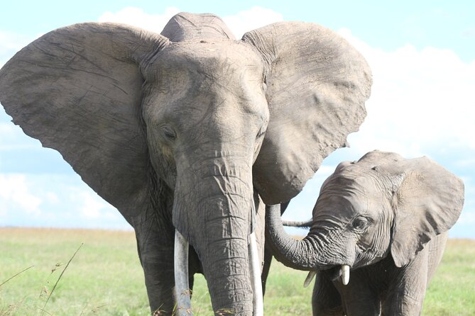 10 -Days Best of Kenya and Tanzania Classic Safari