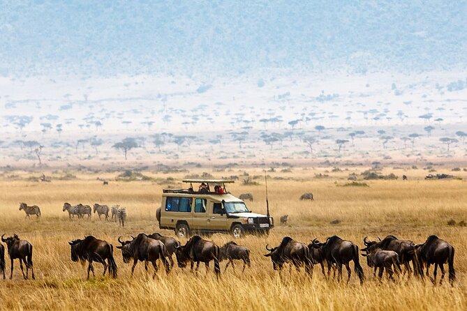 3-Day Tarangire Ngorongoro Crater and Lake Manyara Safari
