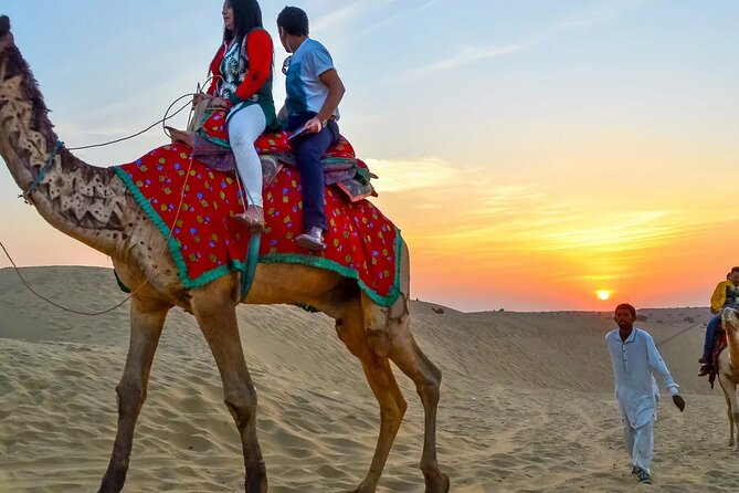 amazing Day Tour To Luxor from Cairo by Plane,Sailing Felucca & Camel Ride,tours