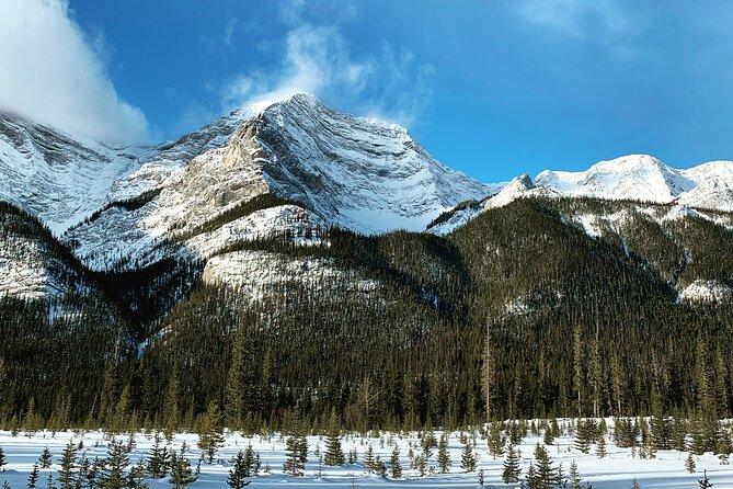 Winter Wilderness & Wildlife Hiking - 3hrs