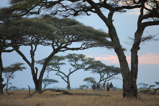 5-Day Lake Naivasha, Lake Nakuru and Masai Mara Family Safari