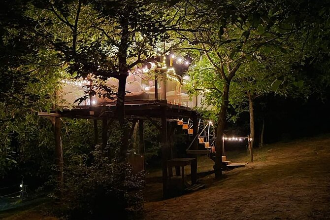 Unique Experience Organ Dinner on a Treetop in Umbria