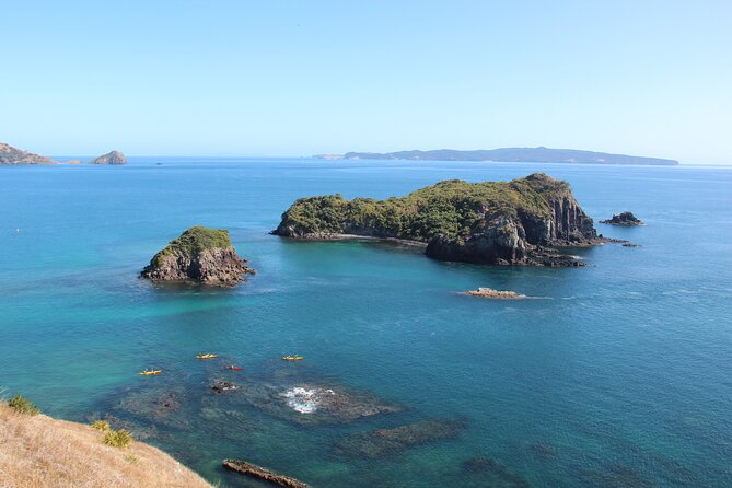 Volcanic Coast Day Trip In Opito Bay