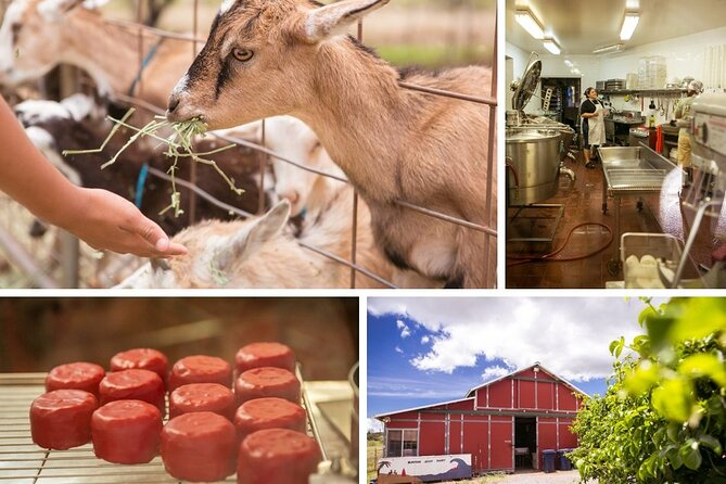 Private Tour to Maui Upcountry - Discover a Sacred Place, Local Farms & Lunch