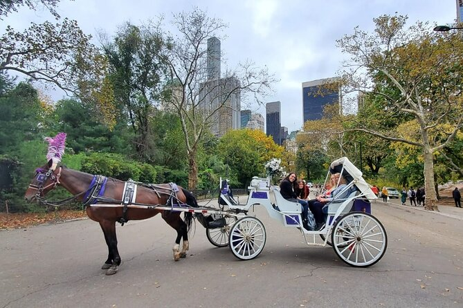 Private NYC Central Park Horse Carriage Ride With Photo Stop (35 min)