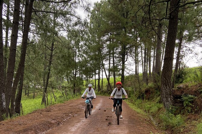 Full-Day Sierra Madre Bike Tour with Lunch