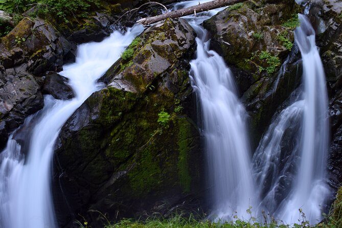 Olympic National Park Waterfall Guided Tour