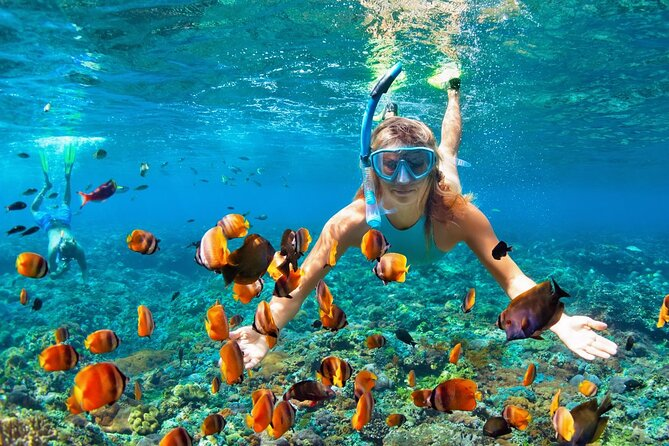 Full-Day Trip to Catalina with Snorkelling from Punta Cana