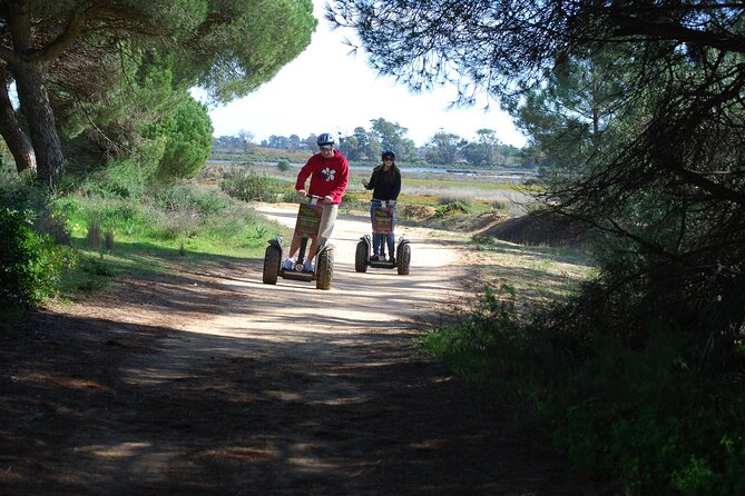 Ria Formosa Natural Park Birdwatching Segway Tour from Faro