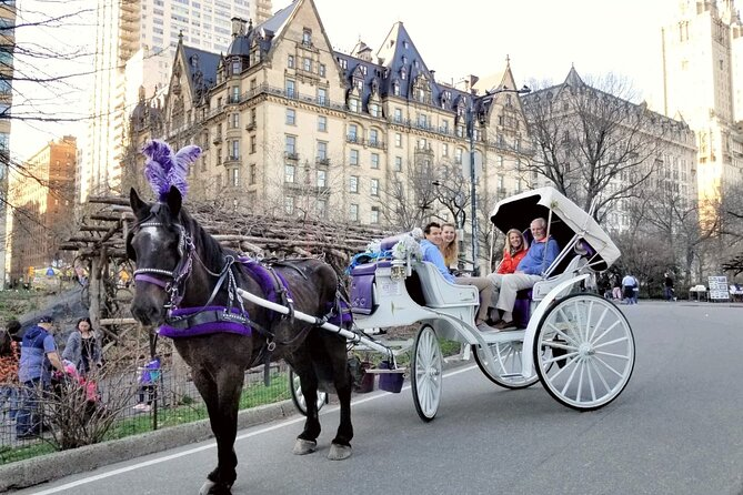 Premium NYC Central Park Horse Carriage Ride With 2 Photo Stops (45 min)