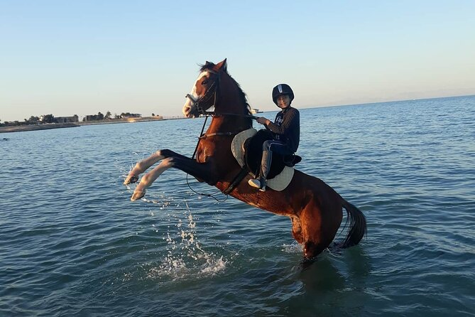 4 Hour Horse Riding in the Desert and Sea