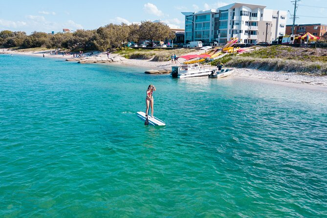 Stand Up Paddle Board Rental in Sunshine Coast