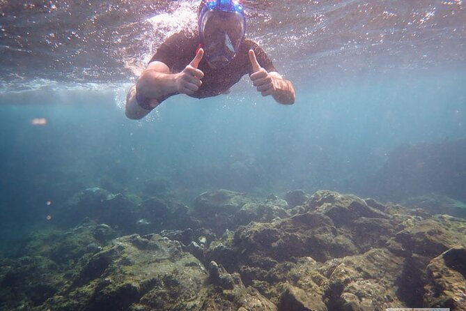 Two Snorkeling Sessions Pack In Tenerife 4,5 H