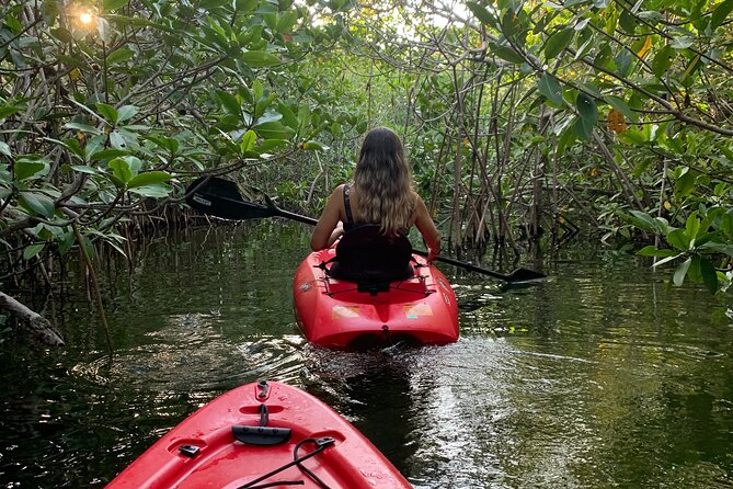 3 Hours Private Kayak Experience in Cancun