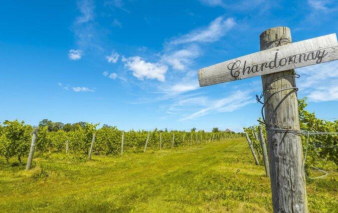 Weingut Blomidon Estate