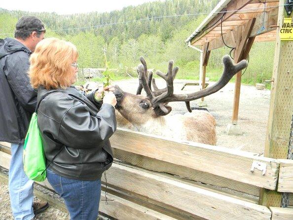 Alaska Regenwaldschutzgebiet