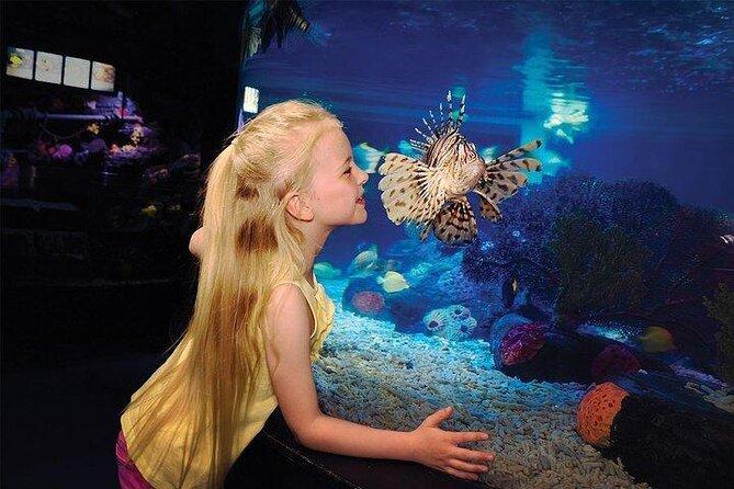 SEA LIFE® San Diego Aquarium