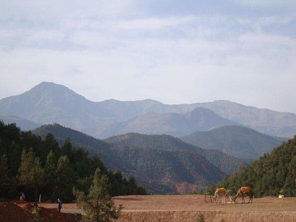 Altopiano di Kik (Plateau du Kik)