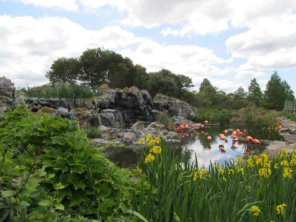 Temaiken Biopark