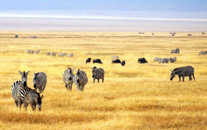 Parque Nacional Meru